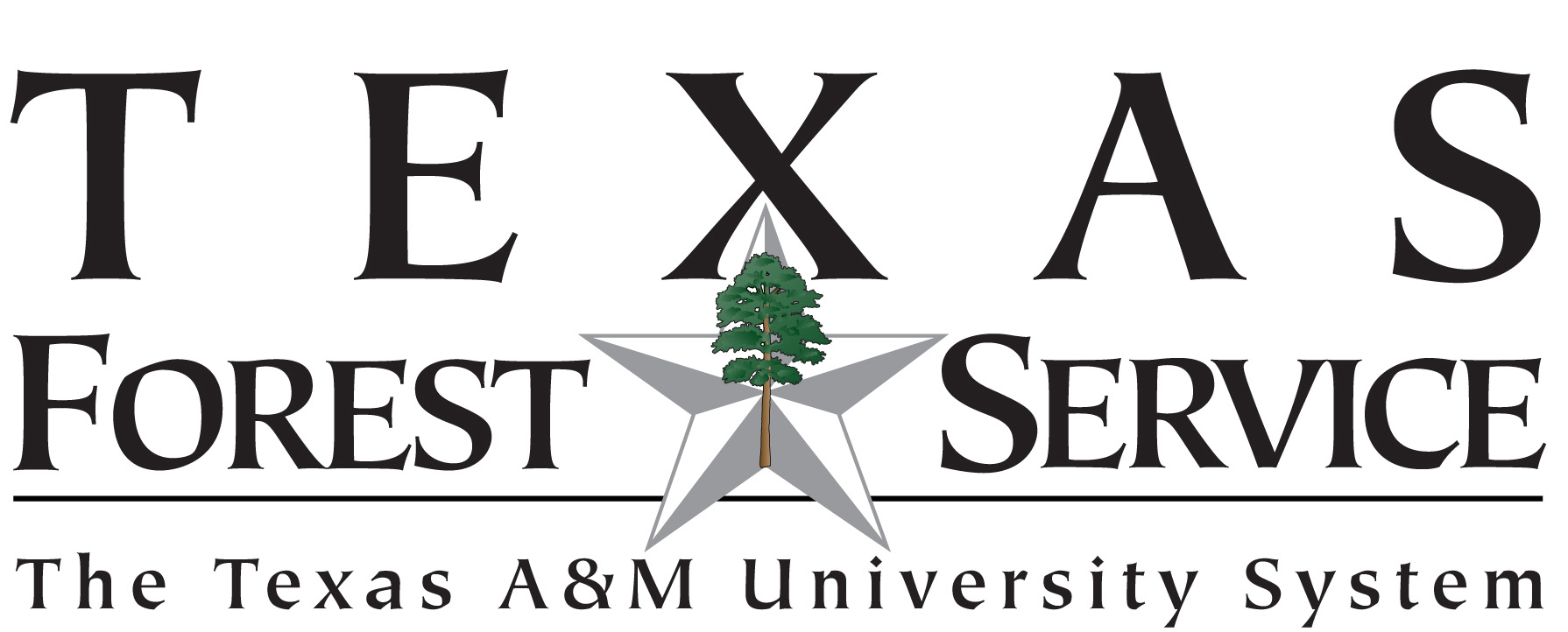 Texas_Forest_Service_Logo